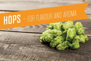 Hops - For Flavour & Aroma