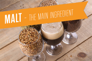 Malt - The Main Ingredient