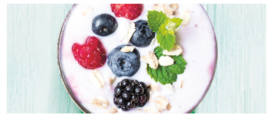Yogurt berry880x400
