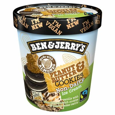 Ben & Jerry's Dairy Free Peanut Butter 500ml
